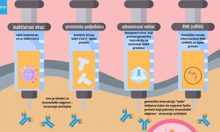 Tipovi vakcina protiv COVID-19: adenovirusne, RNK/mRNA, inaktivirane, protein – kako rade?