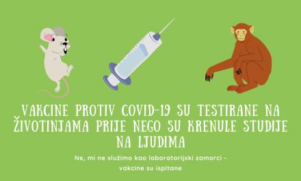 Da li su vakcine protiv korone (COVID-19) testirane na životinjama?